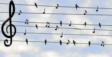 Música para dormir profundamente y que relaja para acabar con el Insomnio